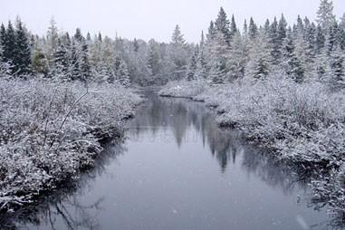 Ruisseau en hiver (Photo : © Photo : Django Blais)