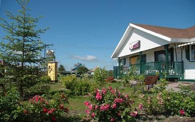 Hydromellerie St-Paul-de-la-Croix (Photo : © Photo : Django Blais)