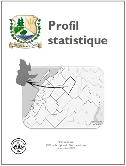 Première page profil statistique 2019 (Auteur : CLD Rivière-du-Loup)